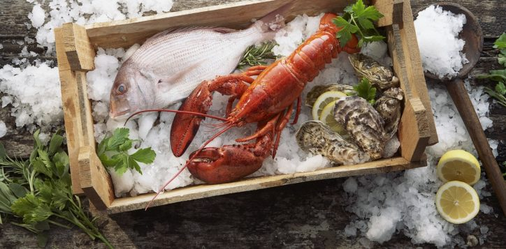 lobster_fish_mussels_ice_seafood_box_6334_1920x1080-2
