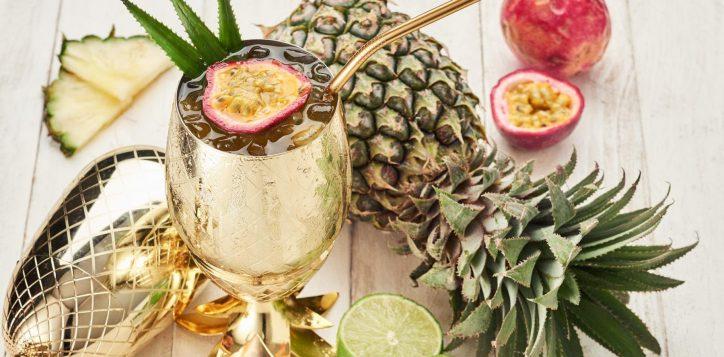 pineapple-tw-2